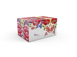 Airdry Design Box Flower ontvochtiger